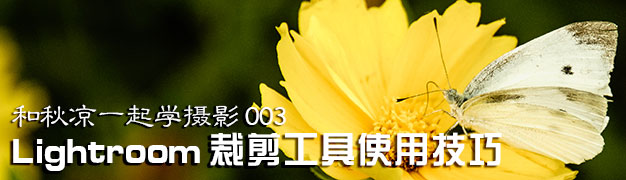 Lightroom裁剪叠加工具使用技巧